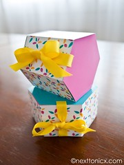 Gift Wrapping Inspiration : Hexagonal Gift boxes (giftsmaps.com) Tags: gifts