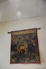 Гранд готель,Авіньйон, Прованс, Франція InterNetri.Net France 0993 (InterNetri) Tags: авіньйон прованс франція гобелен avignon アヴィニョン internetri qntm готель