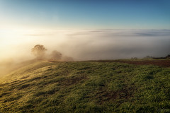 Love is a Fog DSC_6643 (BlueberryAsh) Tags: landscape strathcreek sunrise fog weather cloudsstormssunsetssunrises clouds sunlight grass outdoors nikond750 nikon24120