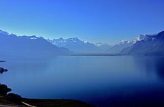 Du bleu plein les yeux (Diegojack) Tags: chardonne vaud suisse d7200 paysages léman cully vignes bleu symphonie groupenuagesetciel fabuleuse