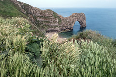 Durdle Door in Dorset - UK - Christine Phillips (Christine's Phillips (Christine's observations) - ) Tags: durdledoor jurassiccoast dorset unitedkingdom england southwestengland weat rock landmark famous horizontal nopeople beautiful peaceful christinephillips landscape nature natural early overcast