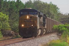 T802 at Land o Lakes, FL 7-10-18 (tarellsallie) Tags: csx norfolksouthern bnsf canadiannational canadianpacific canon canont3i brooksville florida july 2018 macbook edit lightroom copyright trains railroad railfanning