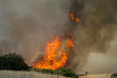 Fire - Wanstead Flats (ArtGordon1) Tags: wansteadflats wanstead london england uk fire davegordon davidgordon daveartgordon davidagordon daveagordon artgordon1 summer july 2018 danger