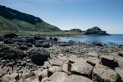 The Giant's Causeway (rjdibella) Tags: 2018 europe summer northernireland unitedkingdom gb giantscauseway ireland