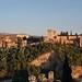 La Alhambra. :-)) (darl57) Tags: a0a5644 laalhambragranada 5dmiii