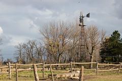 Molino (Letua) Tags: agape bragado escueladeequitación juanachas caballos green horses invierno naturaleza nature verde winter
