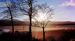 ❤❤❤ (sioned.williams17) Tags: home cymru wales nature water sky blue sand trees sun shine bright photooftheday throwback lovenature homesweethome photo photos pics picture nice pic