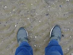 Ebbe (Oli-unterwegs) Tags: nike air airmax max schuhe shoe shoes schuh turnschuhe man mann boy grün green nordsee norddeutschland neuharlingersiel neu meer mud wasser water watt wattenmeer matsch dirty jeans ebbe used getragen
