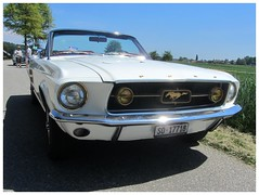 Ford Mustang GTA, 1967 (v8dub) Tags: ford mustang gta 1967 schweiz suisse switzerland bleienbach american muscle pkw pony voiture car wagen worldcars auto automobile automotive old oldtimer oldcar klassik classic collector