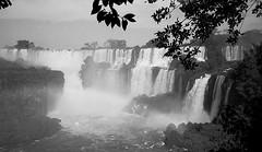 Cataratas del Iguazú (mavricich) Tags: cataratas falls monocromo monocromático misiones argentina agua arte árbol sol sombras iguazú naturaleza