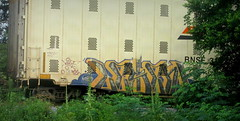 myst - lesen (timetomakethepasta) Tags: myst pos lesen freight train graffiti art bnsf autorack benching