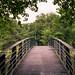 Bridge to West Side Park 246 McBride Ave-03029