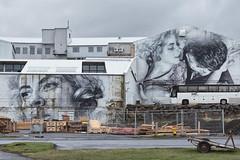 Reykjavik Mural (pni) Tags: mural painting wall building buss grass fence window pavement ingridbergman reykjavik is18 iceland ísland pekkanikrus skrubu pni