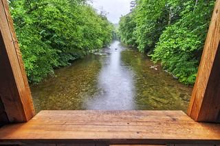 Window View of Big Fishing Creek, 2018.07.17