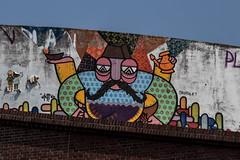 Street Art (michael_hamburg69) Tags: hamburg germany deutschland hafen harbor harbour streetart urbanart artist künstler nepal millerntor7 altona vivaconagua nepalese groseelbstrase treppezumelbberg
