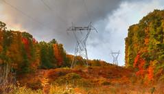 *** (artvbal) Tags: rothrock rothrockstateforest pennsylvania topazimpression usa photoart artwork fall autumn powerline painterly