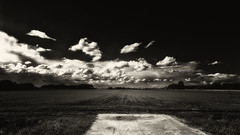 About The Weather Soft BW (Alfred Grupstra) Tags: nature ruralscene blackandwhite cloudsky landscape agriculture sky outdoors field farm cloudscape nopeople scenics nonurbanscene land storm dramaticsky weather summer meadow