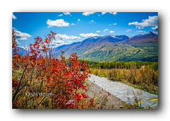 Autumn In Kanas # 5 (Chula Amonjanyaporn) Tags: 喀纳斯 新疆 中国 จุฬา อมรจรรยาภรณ์ chula amornjanyaporn asia china kanas xinjiang autumn landscape