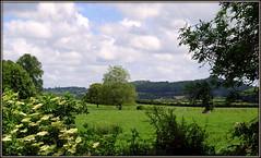 This green and pleasant land (* RICHARD M (7.5 MILLION VIEWS)) Tags: scapes northsomerset somerset mendiphills summer summertime june themendips greenery lush verdant hills greenfields england greatbritain britain unitedkingdom uk britishisles countyside pasture pastures pastoral trees englishcountryside southwestengland clouds winstonchurchill greenandpleasantland thisengland hedges hedgerows hedgerow serene serenity tranquil tranquility fences fenceposts elderflower vegetation