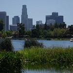 Echo Park Lake thumbnail
