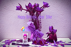 The  Secret to staying young is to live honestly, eat slowly and lie about your age (Chandana Witharanage) Tags: srilanka southasia birthdaywishestoadearfriend silkefromgermany 14thjuly2018 lifeisarainbowoneyearincolours violet 2852weeks stilllife creativephotography kimmidoll freshwaterlillies glassvase tabletop background canoneos7d efs18200mmf3556is chandanawitharanagephotography
