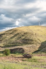 Trails to Lead Old Cows Home Again (garshna) Tags: windturbine pasture abandoned barn hill sky clouds tree trail nikon palouse fences wildflowers grass