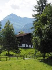 Ballenberg (M_Strasser) Tags: ballenberg olympus olympusomdem1 schweiz suisse switzerland svizzera