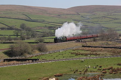 WCR & RTC 1Z65 'The Great Britain XI' hauled by Bulleid 8P MN Pacific 35018 British India Line head  north at Helwith Bridge  on day 2 of the tour 20th April 2018 © (steamdriver12) Tags: wcr rtc west coast railway company touring 1z67 the great britain xi no north 20th april 2018 smoke steam preservation heritage main line coal oil bulleid 8p pacific mn british india 35018 yorkshire dales england spring sunshine