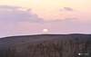 DSC06865 (alvinliuck) Tags: 山陰 鳥取砂丘 鳥取 tottori sand dunes