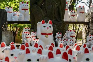 Maneki-neko shrine at Gotokuji Temple (Temple of the Waving Cat)