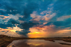 . (Rambonp:loves all creatures of this universe.) Tags: chandigarh sunset dimness sundown twilight evening sun mountains yellow touristplace trees sky clouds nature crop orange red landscape wallpaper paradise silhouette india canon sukhnalake birds sortie dark water