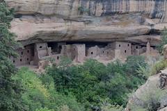 "Mesa Verde, Colorado, US 935 (tango-) Tags: mesaverdemesaverde ancestralpuebloans montezuma canyon us usa unitedstates america westernamerica west ovest америка соединенныештаты сша 美國""美國""美國 amerika vereinigtestaaten アメリカ 米国米国 соединенные штатысша"