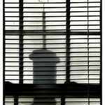 Window to Shadowland... thumbnail