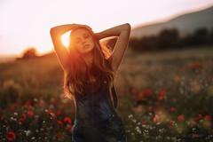 Laetitia (Studio Hors-champ) Tags: sun lens flare back lit backlit dreamy sunset calm blond tranquil scene solitude mood luberon provence france manosque
