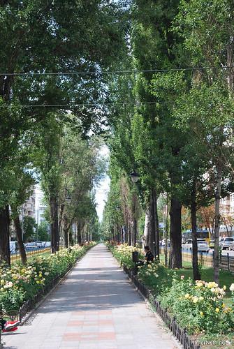 Київ, бульвар Лесі Українки  InterNetri Ukraine 263