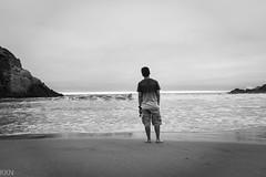 DSC_3619 (ffrookie6) Tags: highway1 coastal california andrewmolera hiking