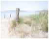 On the Beach (AEChown) Tags: beach icm intentionalcameramovement capecod usa sand sanddunes sea seaside people grass redsweater