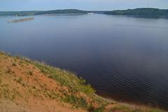 Chamaecytisus on the edge (МирославСтаменов) Tags: russia togliatti volga river sand slope edge chamaecytisus overlook