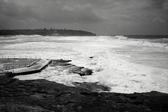 winter swells, Sydney 2017  #929 (lynnb's snaps) Tags: apx100 leicaiiic rodinal beach film rangefinder leicafilmphotography agfaapx100 coast sydney australia blackandwhite bw bianconegro blackwhite biancoenero bianconero blancoynegro noiretblanc monochrome schwarzweis 2017