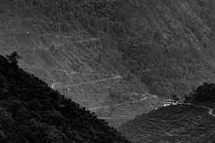 Solitude (Rahul Gaywala) Tags: chardham2018 gangotri uttarakhand incredible india monochrome mountain hill himalaya ganga shiva rudra