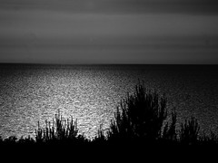sunset in b&w (Darek Drapala) Tags: bw blackwhite blackandwhite nature sea seashore seascape sun sunset reflection reflects panasonic poland polska panasonicg5 lumix light water waterscape waterreflects baltic