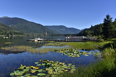 071618-877F (kzzzkc) Tags: nikon d750 canada britishcolumbia whistler altalake lake water docks tree mountains shore day clear lilypad
