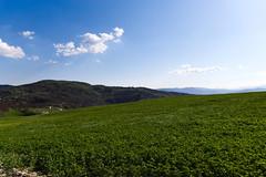 Cedrecchia (Strocchi) Tags: cedrecchia viadeglidei landscape paesaggio erba grass canon eos6d 24105mm bologna