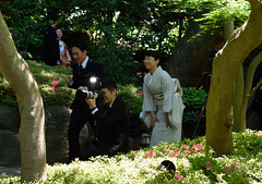 Excited (varnaboy) Tags: minato tokyo japanese garden happoengarden photographer excited people wedding tree flowers takingphoto japan streetphotography