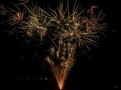 P7020155 (Copy) (pandjt) Tags: ottawa canadaday beaconhill beaconhillcommunityassociation ontario fireworks loyolapark