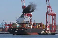 CSL Virginia (das boot 160) Tags: cslvirginia boxboat container ships sea ship river rivermersey port docks docking boats boat mersey merseyshipping maritime l2
