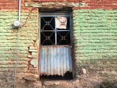 blue door, green and red wall (olive witch) Tags: 2018 abeerhoque altavista blue day door green jun18 june mexico outdoors portfolio