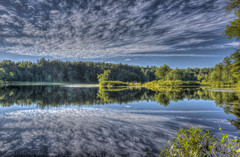 Reflections (Pearce Levrais Photography) Tags: cloud reflection summer summertime pond island plant forest nature outside outdoor landscape picoftheday photooftheday beautiful nh naticook newhampshire canon hdr