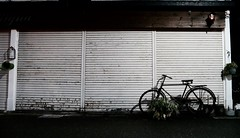 old bicycle (Sat Sue) Tags: gx7mk2 gx80 gx85 japan fukuoka