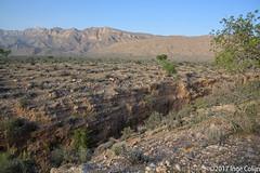 20180330-_DSC0226.jpg (drs.sarajevo) Tags: sarvestan ruraliran iran nomads farsprovince chamsatribe